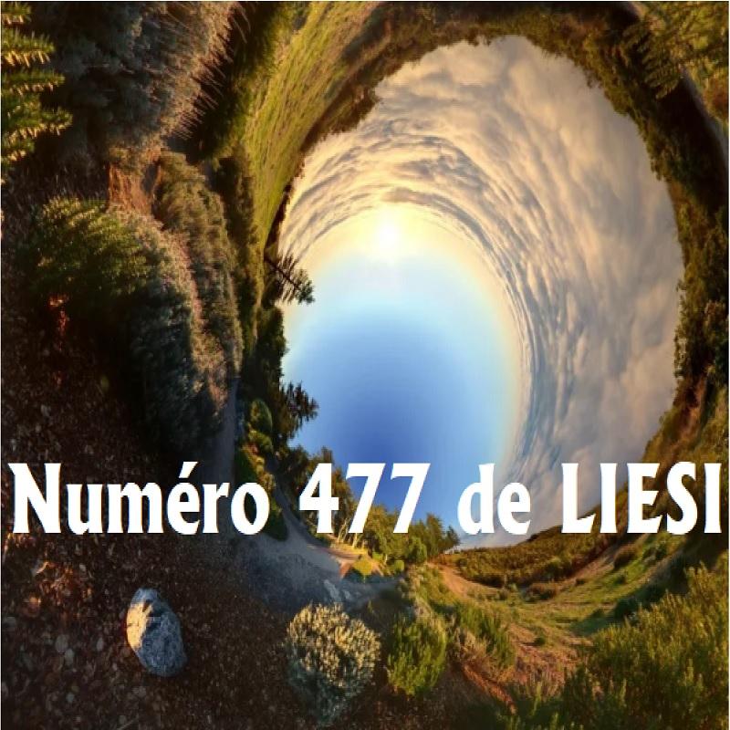 LIESI 477